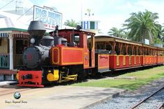 A ''free'' Sunday in Port Douglas, then take a ride on the iconic Bally Hooley steam train. (Speedy or Bundy) the coal fired steam Locos will take you on a relaxed one hour ride past the Marina, through mangroves and resorts. Why not follow it with a relaxed lunch in one of our great restaurants. #steamtrain #portdouglas #mangroves #toottoot #locomotive