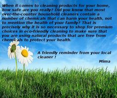Organic Cleaning Products, Steam Cleaning, Cleaning Services, Did You Know, Knowing You, Household, Things To Come, Housekeeping, Maid Services