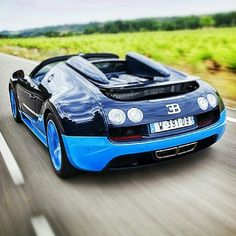 Bugatti (Blue and Navy)
