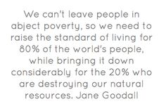 We can't leave people in abject poverty, so we need to raise the standard of living for 80% of the world's people, while bringing it down considerably for the 20% who are destroying our natural resources.  Jane Goodall