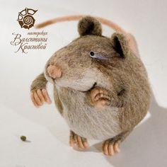 Cute rat.