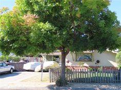 San Luis Obispo County, The Neighbourhood, California, Patio, Outdoor Decor, The Neighborhood, Terrace, Porch, Courtyards