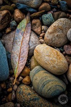 Rock | Pebble | Stone | 岩 | 石 | Pierre | камень | Pietra | Piedra | Color | Texture | Pattern |  Clinton River