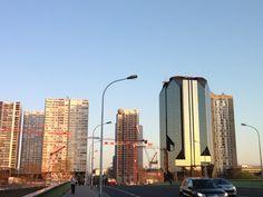 Cranes morning