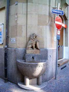 Freiburger Löwen