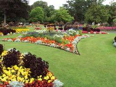 jardines grandes con zona con flores
