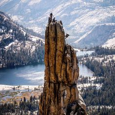 "196.5k Likes, 877 Comments - National Geographic Travel (@natgeotravel) on Instagram: ""Photo by @ronan_donovan // Climbers rappelling of the Eichorn Pinnacle in Yosemite National Park,…"""