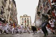 I'd love to see the running of the bulls  in Pamplona, Spain but not this close. I'd want to be in one of those apartment buildings watching from the safety of a window.