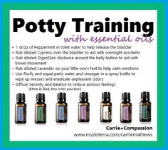 Potty Training with essential oils: Peppermint, Cypress, DigestZen, Lavender, Purify, Serenity, Balance