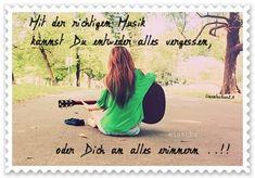 dreamies.de (km1m97t0lhp.jpg)