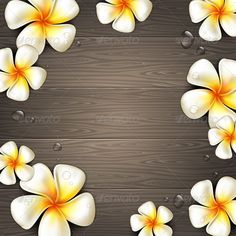 Tropical Flowers on a Wooden Background #GraphicRiver Frangipani tropical flowers and water drops on a wooden background – vector illustration. File contains transparent elements and mesh gradients. Included files: .ai (CS4), .eps (10 version), high-resolution .jpeg (5512×5512 pixels) Created: 14June13 GraphicsFilesIncluded: JPGImage #VectorEPS #AIIllustrator Layered: Yes MinimumAdobeCSVersion: CS Tags: background #black #board #dark #design #drops #exotic #flora #floral #flowers #frangipani…