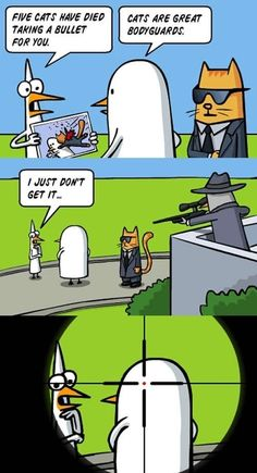 Cats are great bodyguards  - funny pictures #funnypictures
