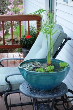 Inspiring Small Garden Water Features Ideas. How nice this small tabletop water garden would be with some wee fish!