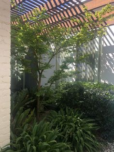Nook, House Ideas, New Homes, Garden, Plants, Nooks, Garten, Lawn And Garden, Gardens