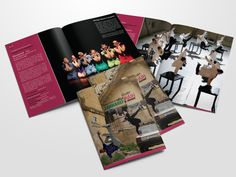 2013 - Campaign Marketing Materials, Printed Materials, Layout Design, Campaign, Typography, House Design, Concept, Graphic Design, Artwork