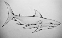 tattoo design for my sis Mako Shark Fish Drawings, Cool Drawings, Animal Sketches, Animal Drawings, Tattoo Sketches, Art Sketches, Posseidon Tattoo, Hai Tattoos, Sea Creatures Drawing