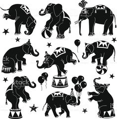 circus silhouettes   Circus Elephant Silhouette