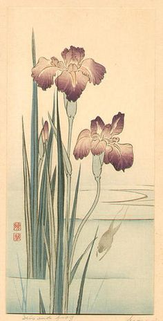 Gyosui Suzuki: Iris and Frog - Japanese Art Open Database Korean Painting, Japanese Painting, Botanical Drawings, Botanical Art, Art And Illustration, Traditional Japanese Art, Japanese Flowers, China Art, Japanese Prints