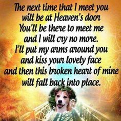 Macy we will be together in heaven❤️ Pet Loss Quotes, Dog Quotes, I Love Dogs, Puppy Love, Pet Loss Grief, Pet Remembrance, Dog Heaven, Dog Memorial, Rainbow Bridge