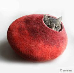 A cocoon for the aesthetically inclined design-y cat: