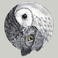 owl ying-yang for side tatoo Buho Tattoo, I Tattoo, Tattoo Bird, Tiny Owl Tattoo, Owl Forearm Tattoo, Tribal Owl Tattoos, Yin Yang Tattoos, Tattoo Animal, Tattoo Mermaid
