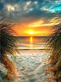 Beautiful Sunrise, Beautiful Beaches, Sunset Beach, Beach Sunsets, Sand Beach, Beach Sunset Painting, Summer Sunset, Ocean Beach, Beach Fun