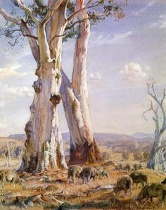 Two White Gum Trees at Ambleside (watercolour, 1944), Hahndorf, South Australia.