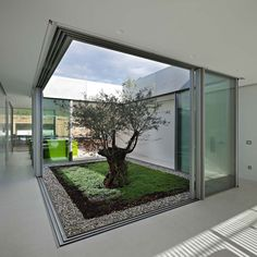 Discover amazing courtyard designs from all over the world, with indoor trees, outdoor furniture and lighting, retractable walls, patios and atrium ceilings. Courtyard Design, Courtyard House, Garden Design, Modern Courtyard, Garden Modern, Interior Garden, Home Interior Design, Interior Architecture, Interior Doors