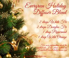 Evergreen holiday - white fir, douglas fir, peppermint and wild orange