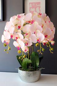 Delikatny różowy storczyk w eleganckim naczyniu od tenDOM