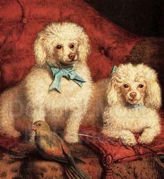 """Vintage 3 1/2""""x3 1/2"""" Dog Print 1996 """"Three Poodles in Phoenix"""" by Marian Winsryg Framed Dog Art Framed Poodle Dog Art, SHIPS FREE!"""