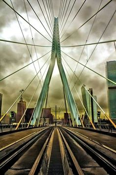 Erasmusbrug - Erasmus Bridge. Rotterdam.  I walked across and back and took photos from this bridge.