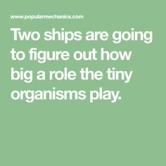 Two ships are going to figure out how big a role the tiny organisms play.