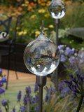 Glass Dew Drops by Neil Wilkin