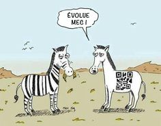 Evolue mec !