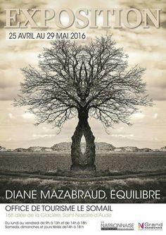 Une magnifique expo en ce moment à l'office de tourisme EQUILIBRE de Diane Mazabraud. Vernissage ce vendredi à partir de 18h30