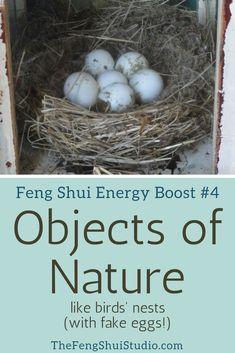Feng Shui, Feng Shui Tips, Feng Shui Home, Feng Shui Energy Boost, Self-Improvement, Home Improvement #fengshui #fengshuitips #fengshuihome #fengshuienergy #energyboost #goodenergy #selfimprovement #homeimprovement http://thefengshuistudio.com/feng-shui/feng-shui-energy-boost-4-objects-of-nature/