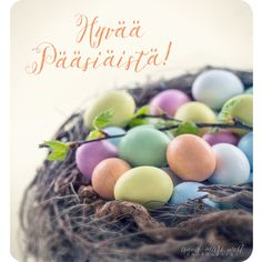 Always On My Mind, Funny Animals, Anna, Easter, Feelings, Photography, Decor, Always Thinking Of You, Photograph