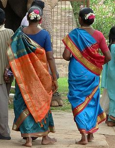 South Indian women in their resplendent silk saris Saris, Namaste, Village Photography, Amazing India, Indian People, India Culture, Asian History, Indian Movies, Belle Photo