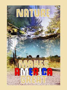 Nature/Environment by Grace Dynek