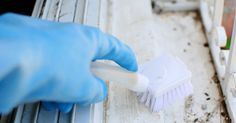 Share Tweet + 1 Mail Learn these three tricks for killing mold and mildew. One of these you most likely already have in your ...