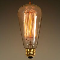 40 Watt - Edison Bulb - 5.2 in. Length - Vintage Light Bulb - Squirrel Cage Filament - Amber Tinted