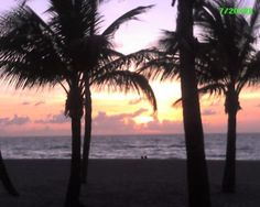 Hollywood Photos - Featured Images of Hollywood, FL - TripAdvisor