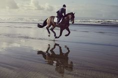 I love to do this on the Washington coast!