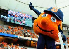 Sad article by a big dufus : Otto the Orange.