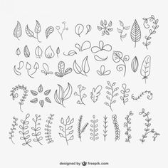 Hand drawn leaves pack VYNIL WALL HOJAS DOODLE