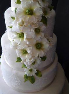 Cake.  ''Incanto Di Zucchero''