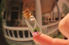 mARIMO,miniature marimo aquarium with PINK FLOWERs, cute deco, miniature aquarium.. $8.99, via Etsy.