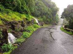 Goa in Monsoon is lovely. These 5 Offbeat things to do in Goa will enhance your monsoon experience of Goa. Check it out.......