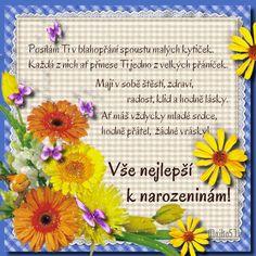 prani_k_narozeninam_3 Album